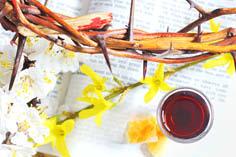 КСНУМКС знање о јесу цхристи