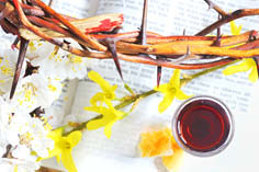 040 njohuritë e jesu christi