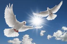 fryma e shenjtë